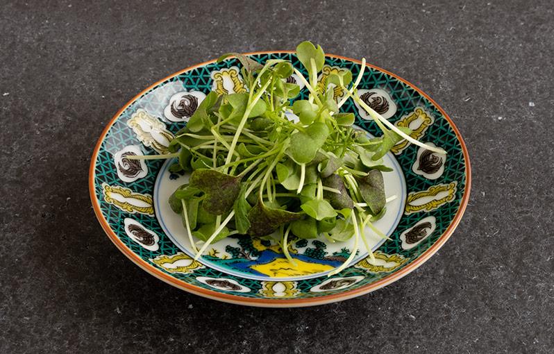レッドからし水菜の具材写真です。